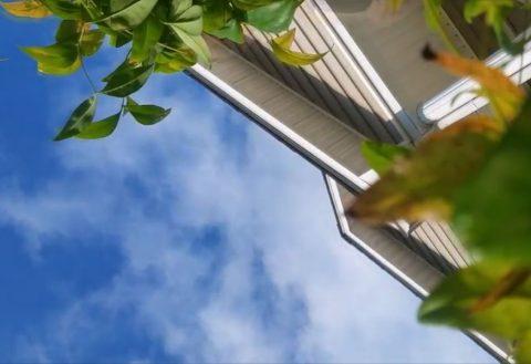 Celulari që ra nga qielli (Video)