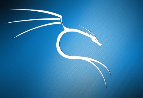 Tani mund të shkarkoni Kali Linux në Microsoft Store